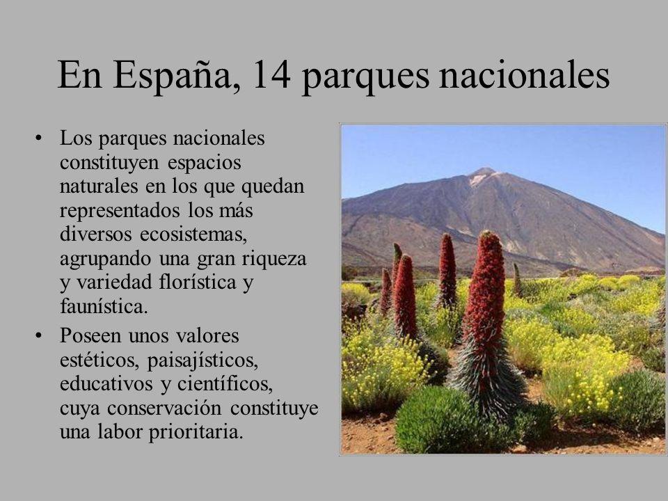 En España, 14 parques nacionales