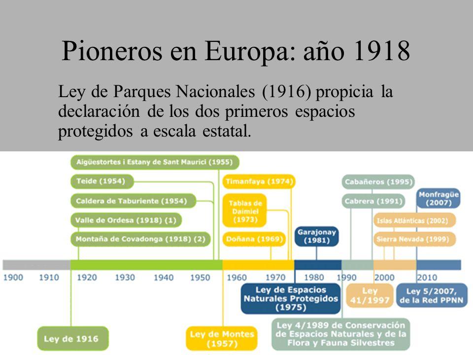 Pioneros en Europa: año 1918