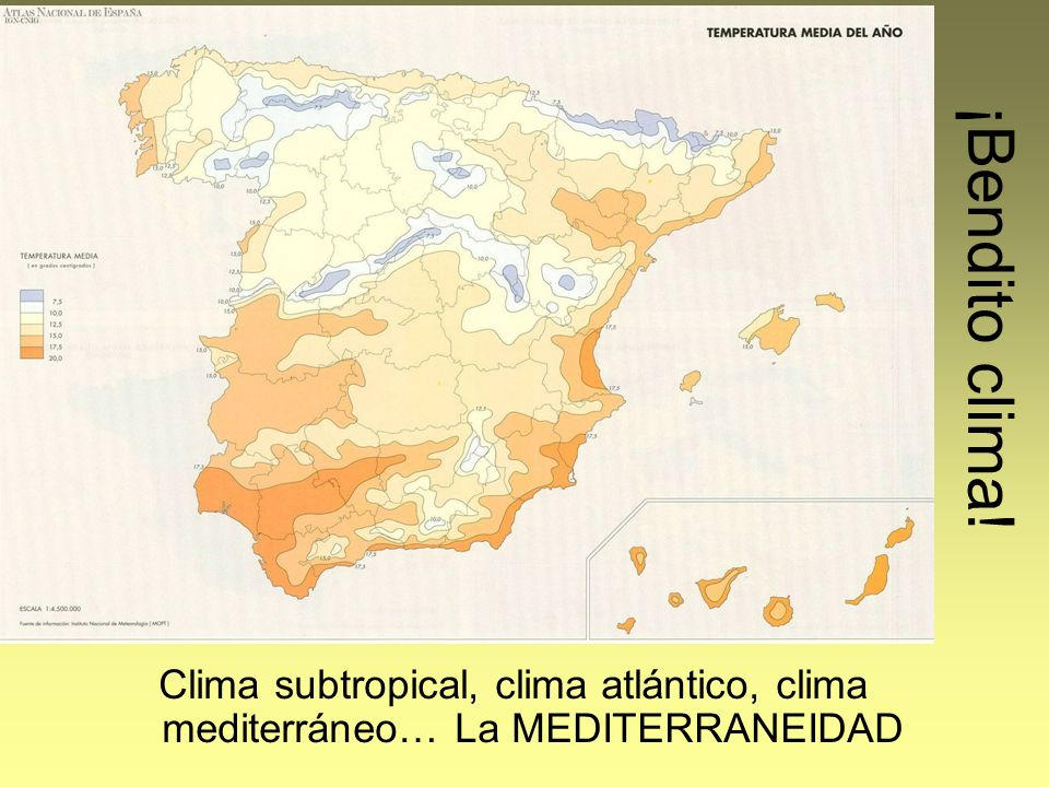 ¡Bendito clima! Clima subtropical, clima atlántico, clima mediterráneo… La MEDITERRANEIDAD