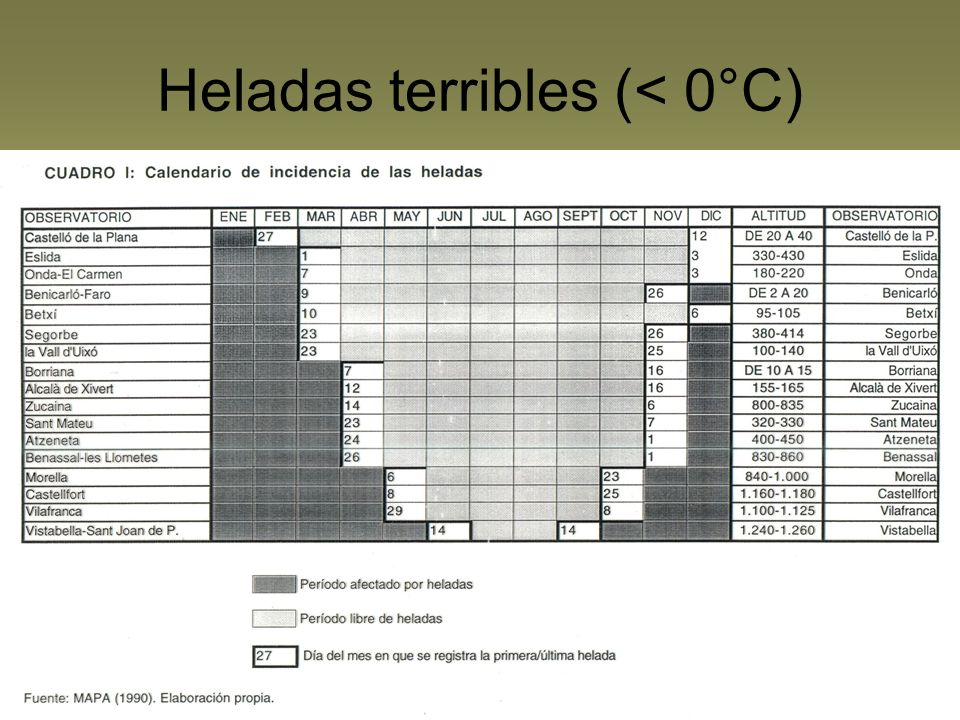 Heladas terribles (< 0°C)