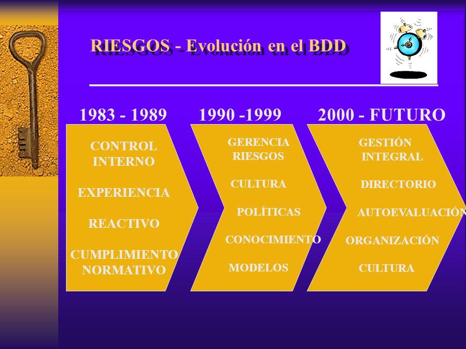 RIESGOS - Evolución en el BDD