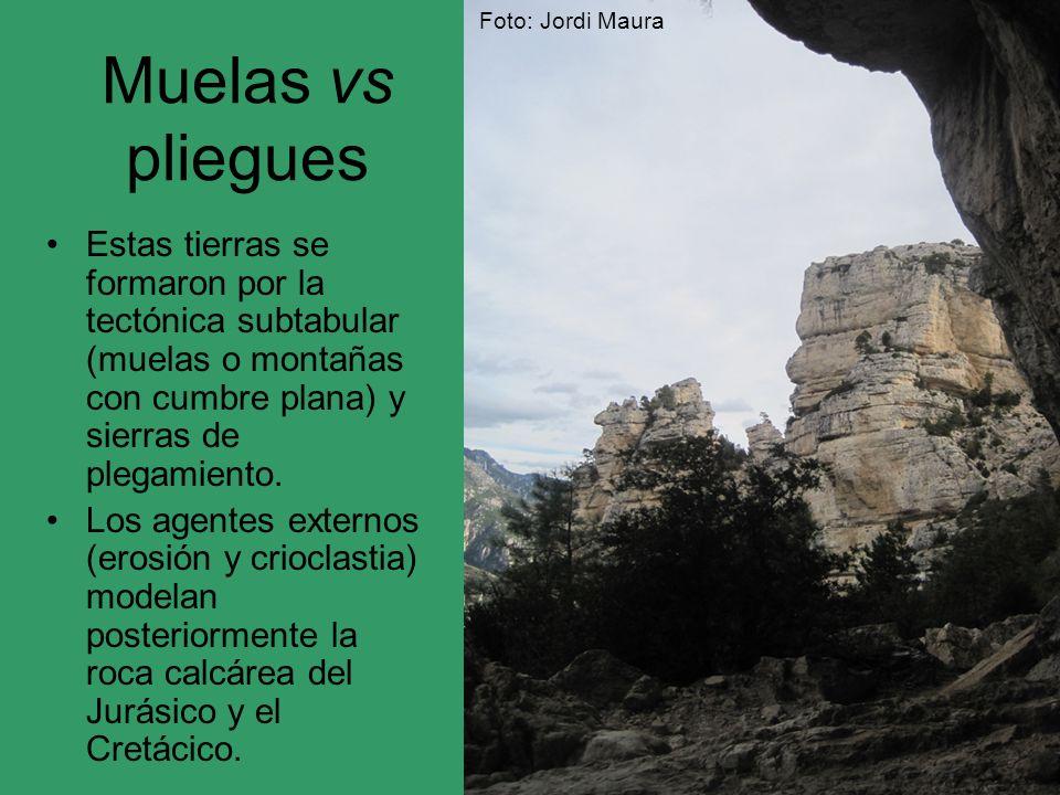 Foto: Jordi Maura Muelas vs pliegues.