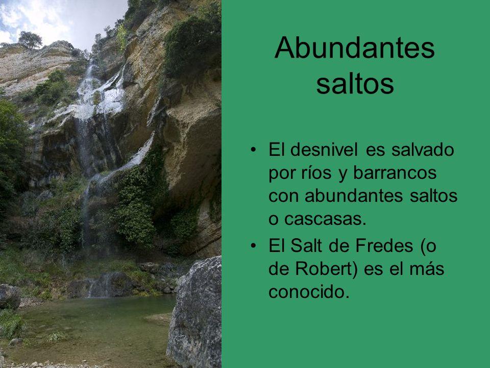 Abundantes saltos El desnivel es salvado por ríos y barrancos con abundantes saltos o cascasas.