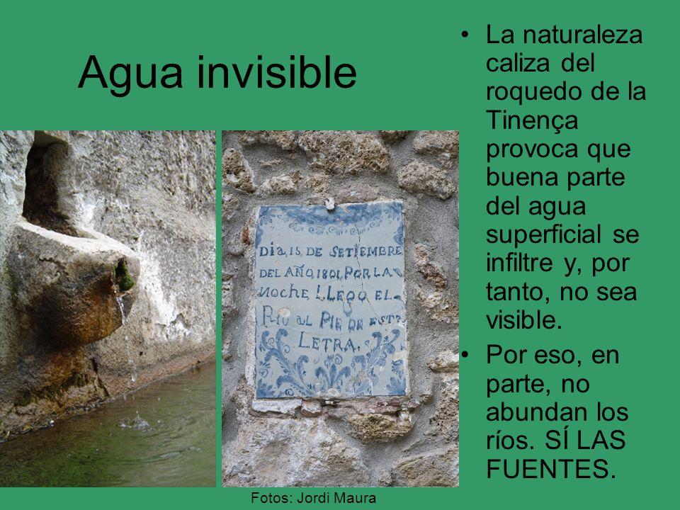 Agua invisible La naturaleza caliza del roquedo de la Tinença provoca que buena parte del agua superficial se infiltre y, por tanto, no sea visible.