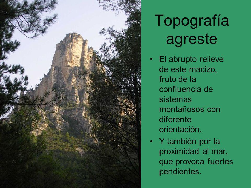 Topografía agreste El abrupto relieve de este macizo, fruto de la confluencia de sistemas montañosos con diferente orientación.