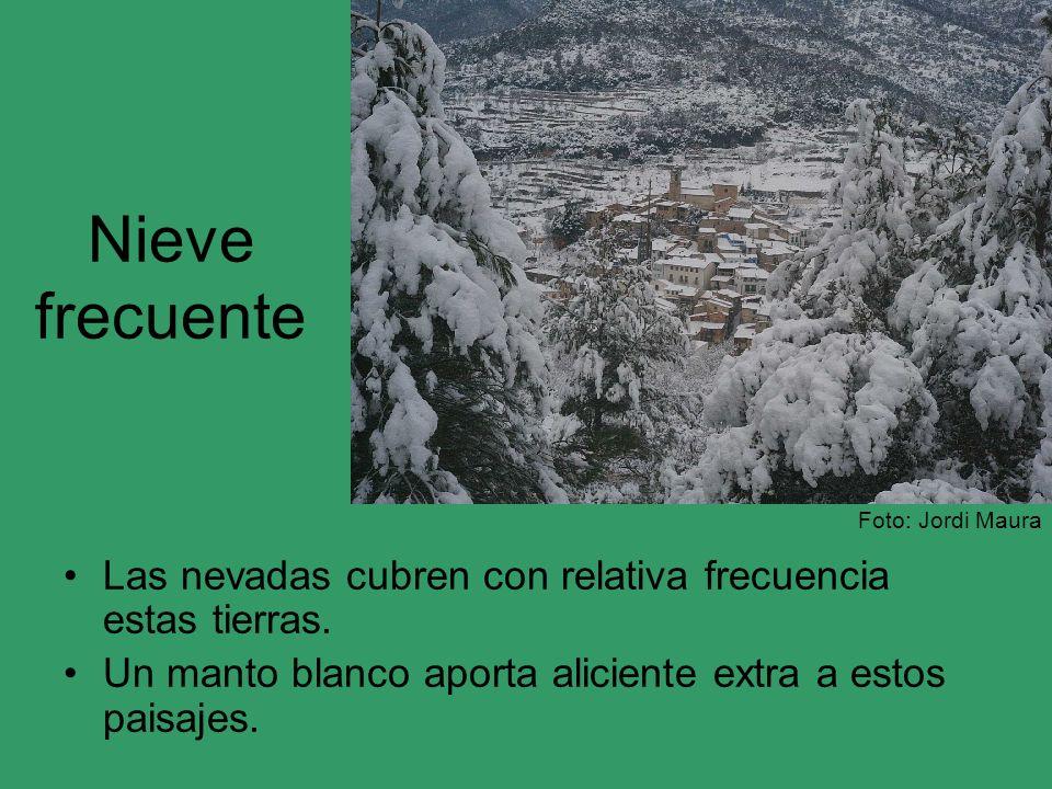 Nieve frecuente Foto: Jordi Maura. Las nevadas cubren con relativa frecuencia estas tierras.