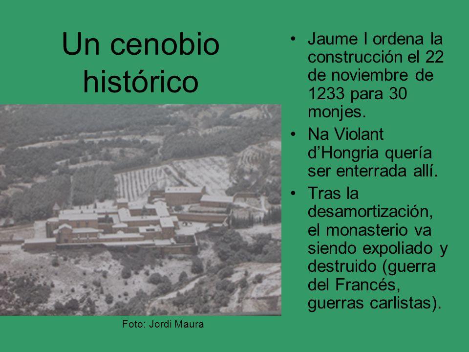 Un cenobio histórico Jaume I ordena la construcción el 22 de noviembre de 1233 para 30 monjes. Na Violant d'Hongria quería ser enterrada allí.
