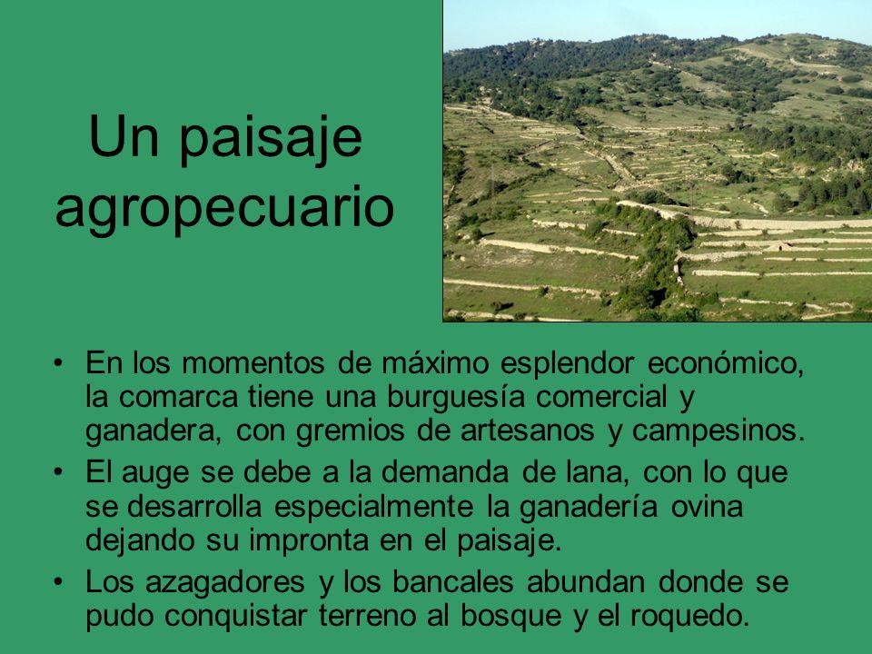 Un paisaje agropecuario