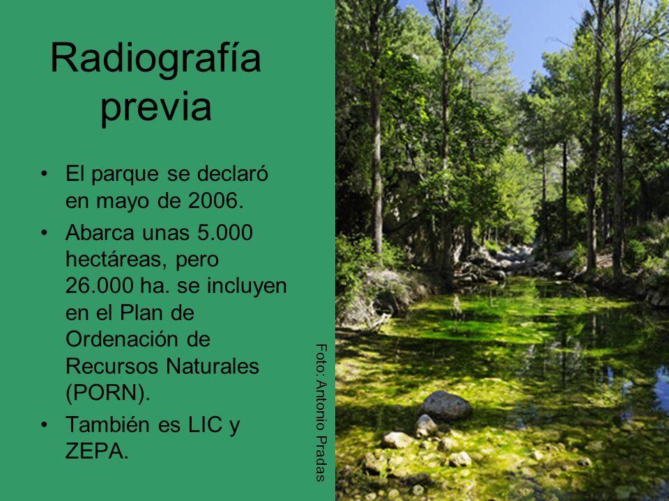 Radiografía previa El parque se declaró en mayo de 2006.