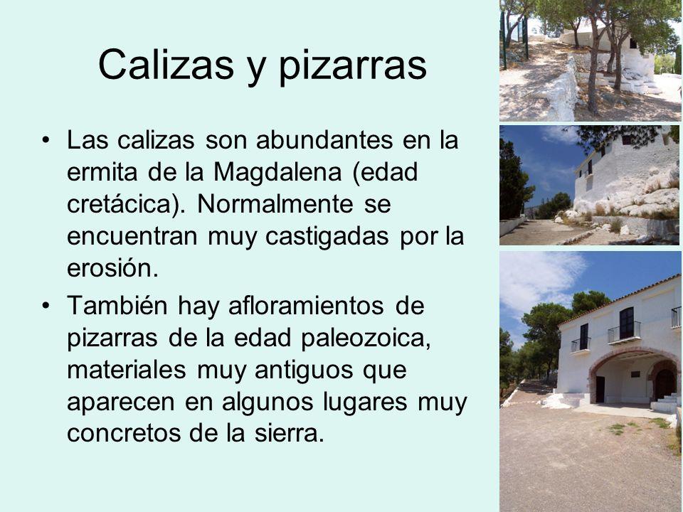 Calizas y pizarrasLas calizas son abundantes en la ermita de la Magdalena (edad cretácica). Normalmente se encuentran muy castigadas por la erosión.