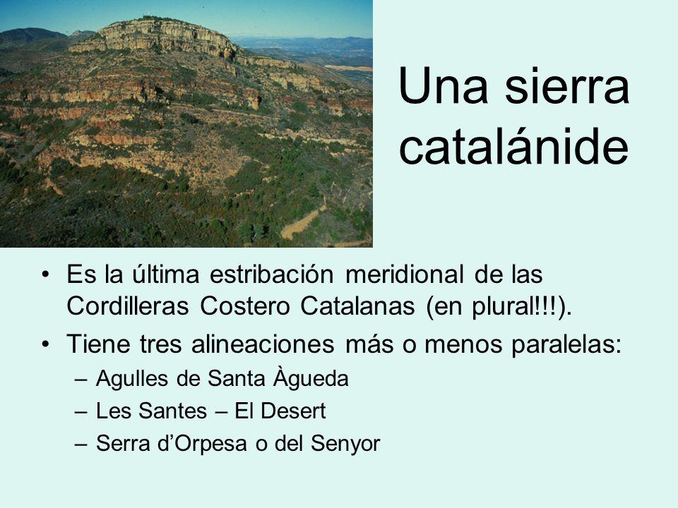 Una sierra catalánide Es la última estribación meridional de las Cordilleras Costero Catalanas (en plural!!!).