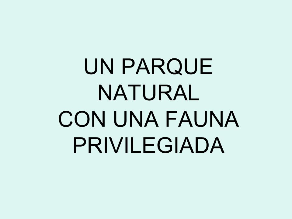 UN PARQUE NATURAL CON UNA FAUNA PRIVILEGIADA