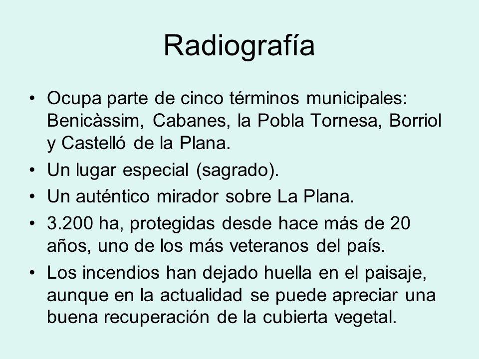 RadiografíaOcupa parte de cinco términos municipales: Benicàssim, Cabanes, la Pobla Tornesa, Borriol y Castelló de la Plana.