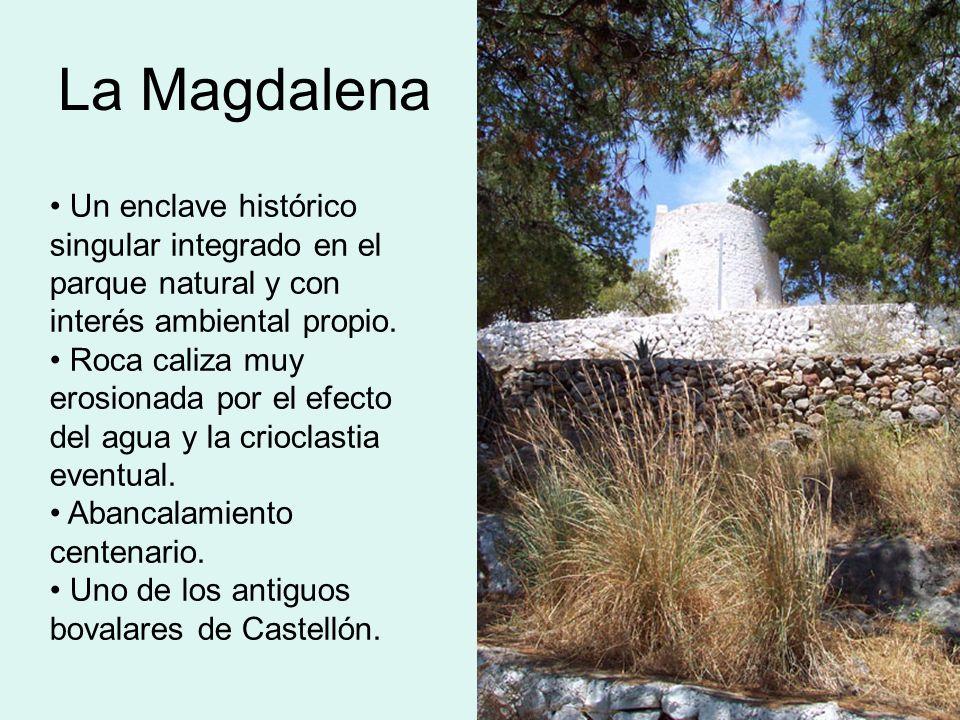 La Magdalena Un enclave histórico singular integrado en el parque natural y con interés ambiental propio.