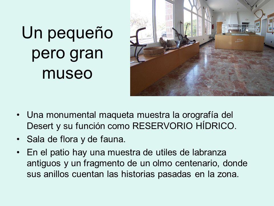 Un pequeño pero gran museo
