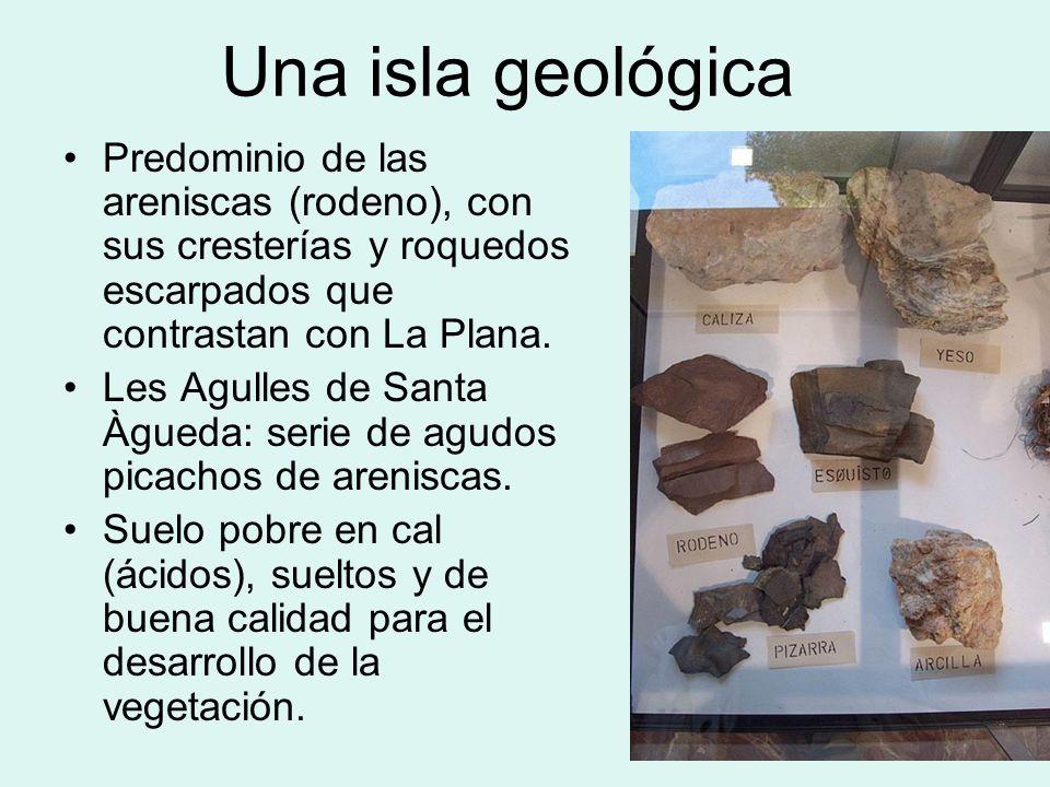 Una isla geológicaPredominio de las areniscas (rodeno), con sus cresterías y roquedos escarpados que contrastan con La Plana.