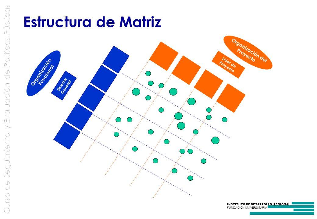 Estructura de Matriz Organización del Organización Funcional Líder de