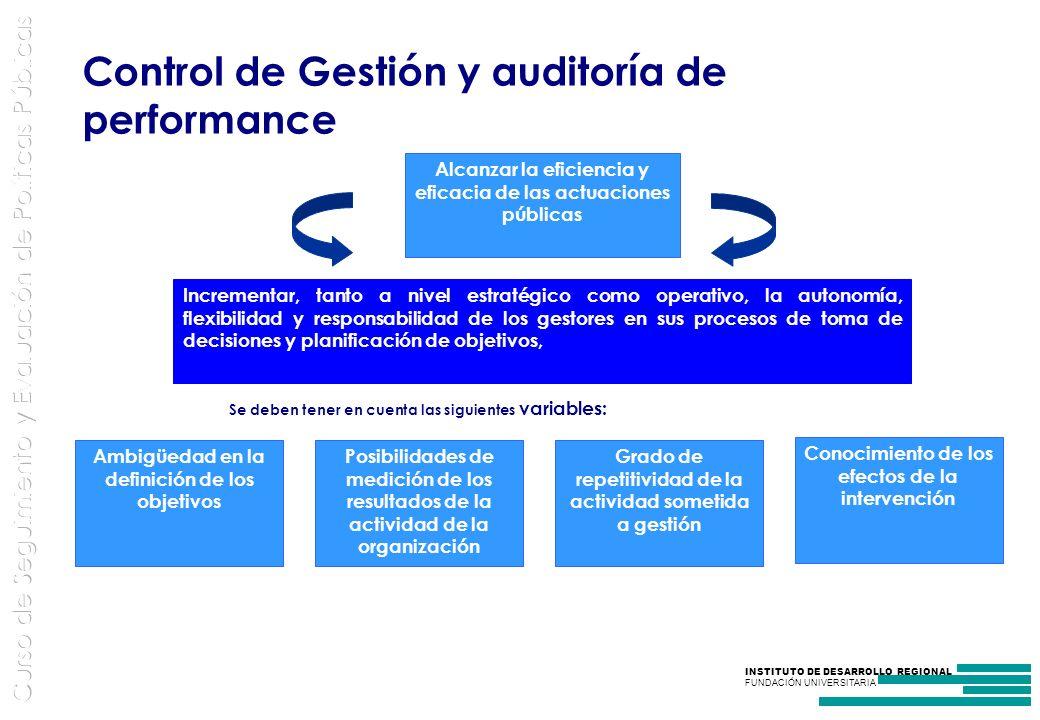 Control de Gestión y auditoría de performance