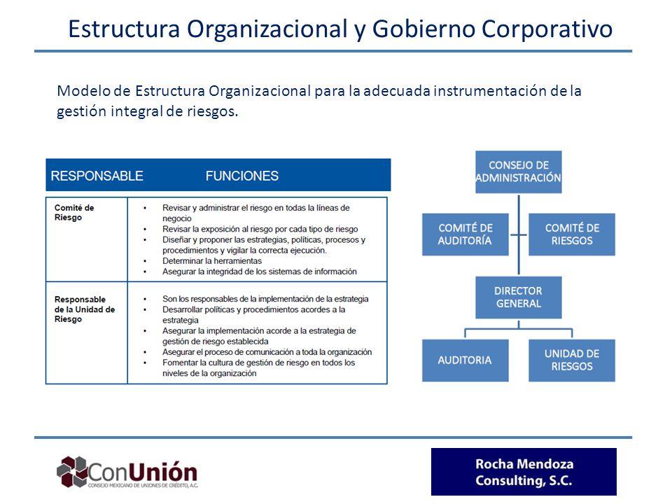 Estructura Organizacional y Gobierno Corporativo