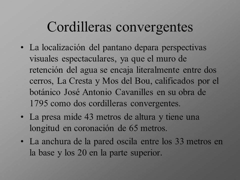 Cordilleras convergentes