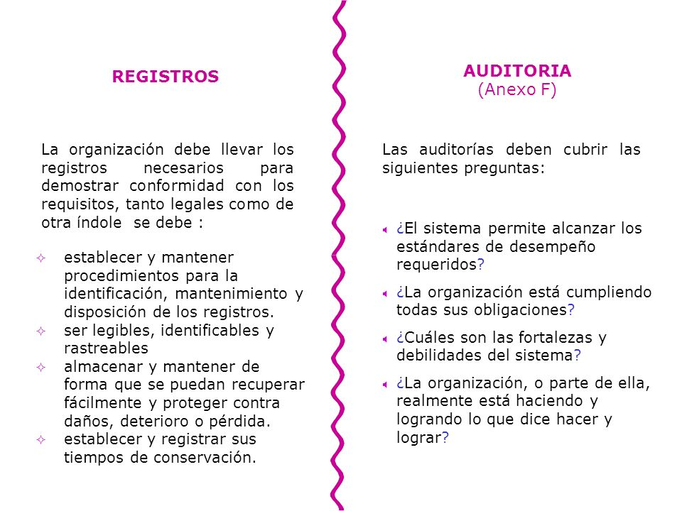 AUDITORIA REGISTROS (Anexo F)