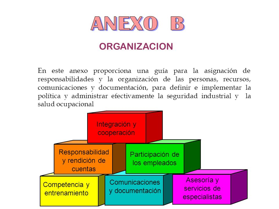 ANEXO B ORGANIZACION.