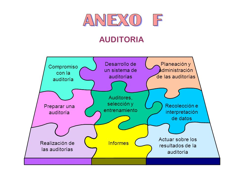 ANEXO F AUDITORIA Desarrollo de un sistema de auditorías