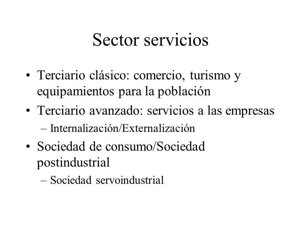 Sector servicios Terciario clásico: comercio, turismo y equipamientos para la población. Terciario avanzado: servicios a las empresas.