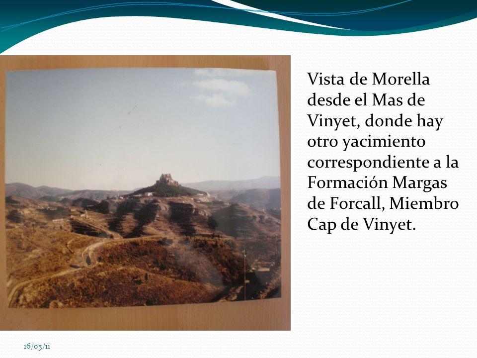 Vista de Morella desde el Mas de Vinyet, donde hay otro yacimiento correspondiente a la Formación Margas de Forcall, Miembro Cap de Vinyet.