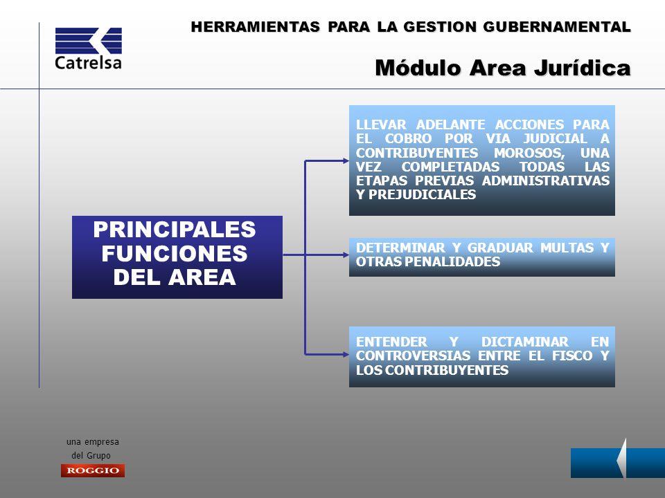 PRINCIPALES FUNCIONES DEL AREA