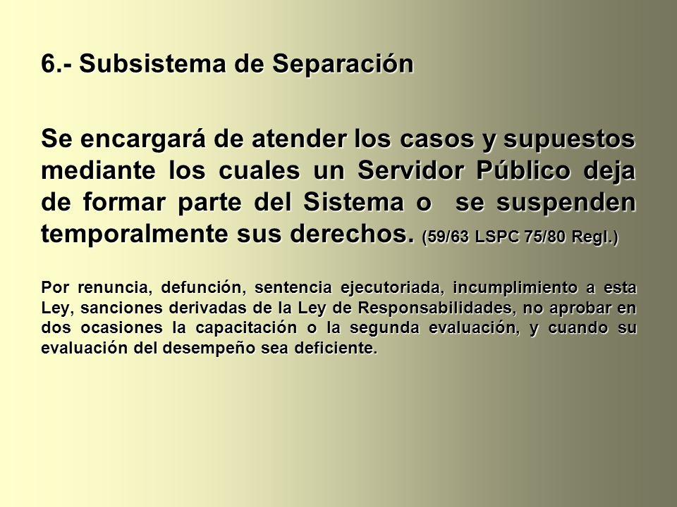 6.- Subsistema de Separación