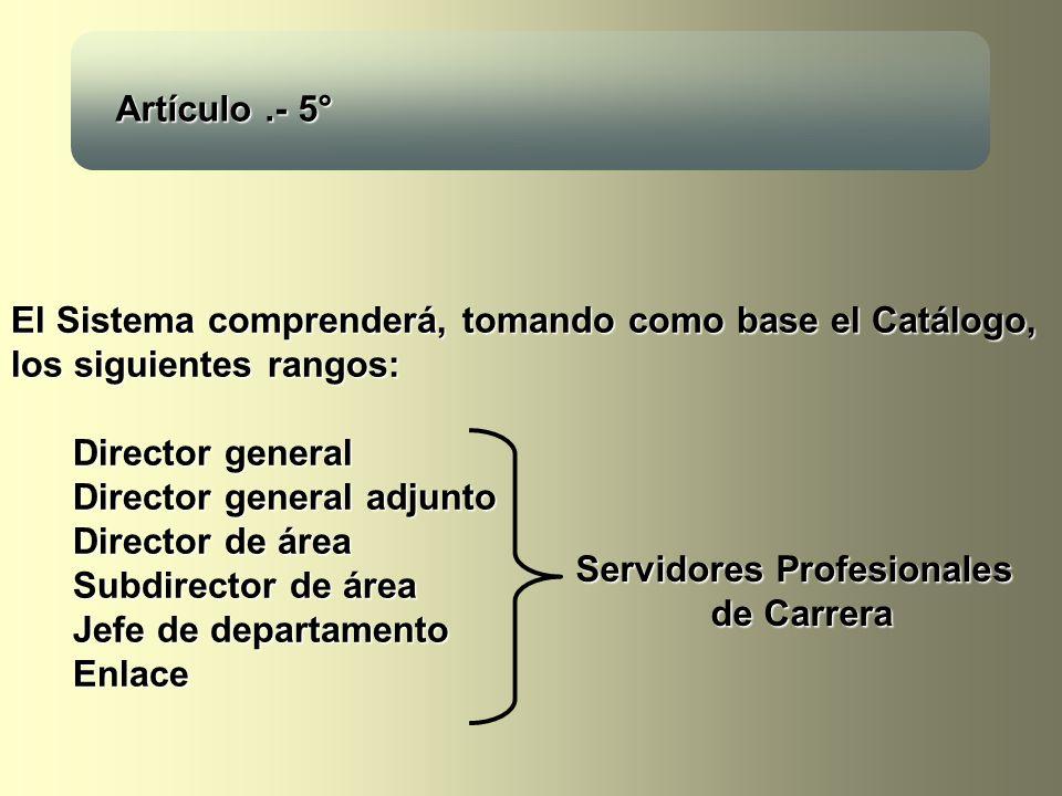 Servidores Profesionales