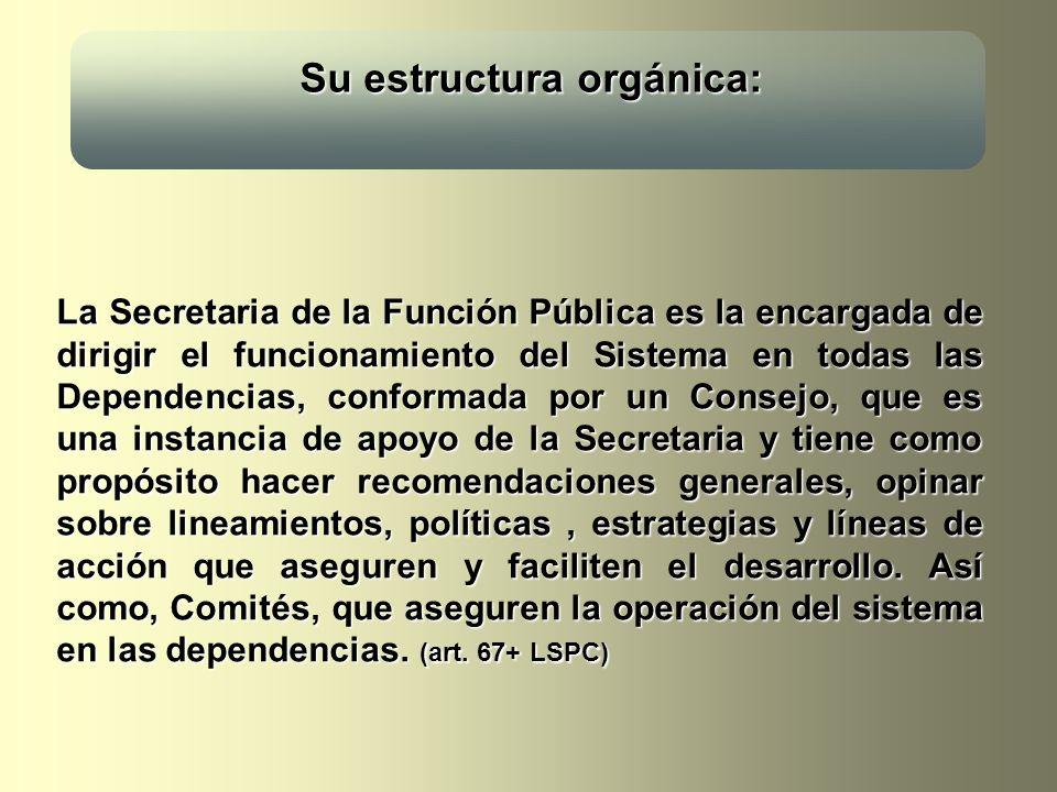 Su estructura orgánica: