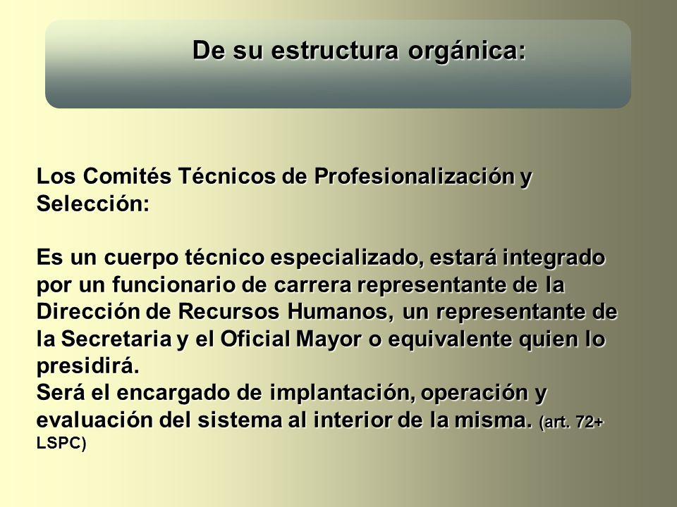 De su estructura orgánica: