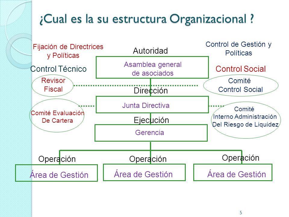 ¿Cual es la su estructura Organizacional