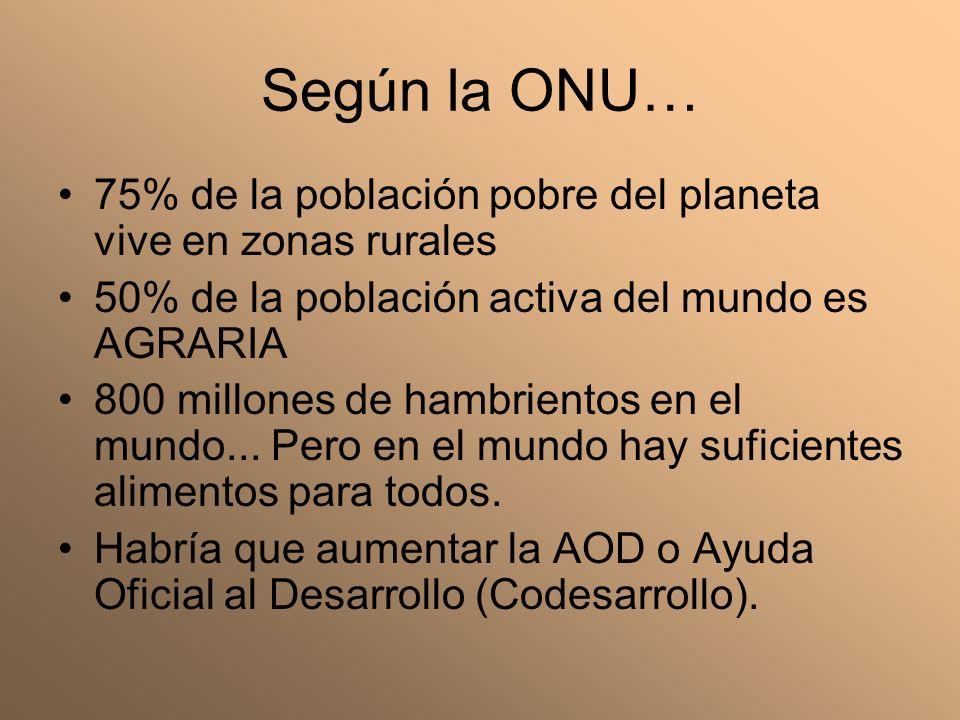 Según la ONU… 75% de la población pobre del planeta vive en zonas rurales. 50% de la población activa del mundo es AGRARIA.