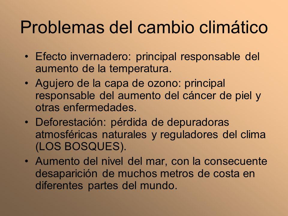 Problemas del cambio climático