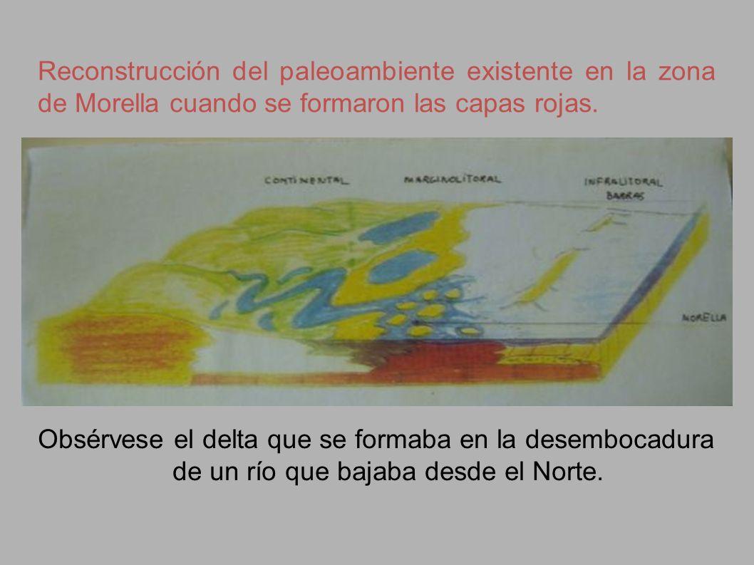 Reconstrucción del paleoambiente existente en la zona de Morella cuando se formaron las capas rojas.