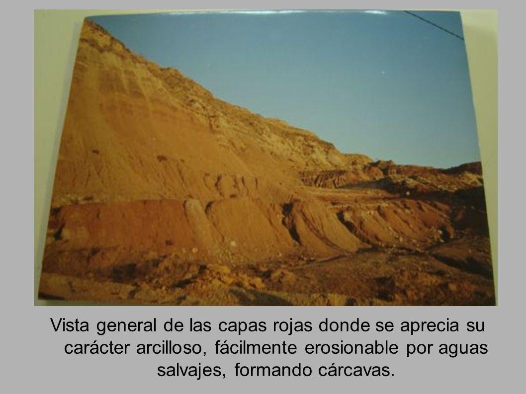 Vista general de las capas rojas donde se aprecia su carácter arcilloso, fácilmente erosionable por aguas salvajes, formando cárcavas.