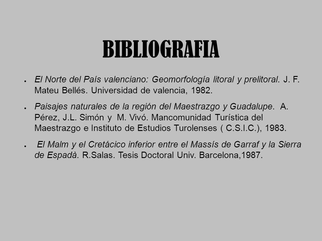 BIBLIOGRAFIA El Norte del País valenciano: Geomorfología litoral y prelitoral. J. F. Mateu Bellés. Universidad de valencia, 1982.
