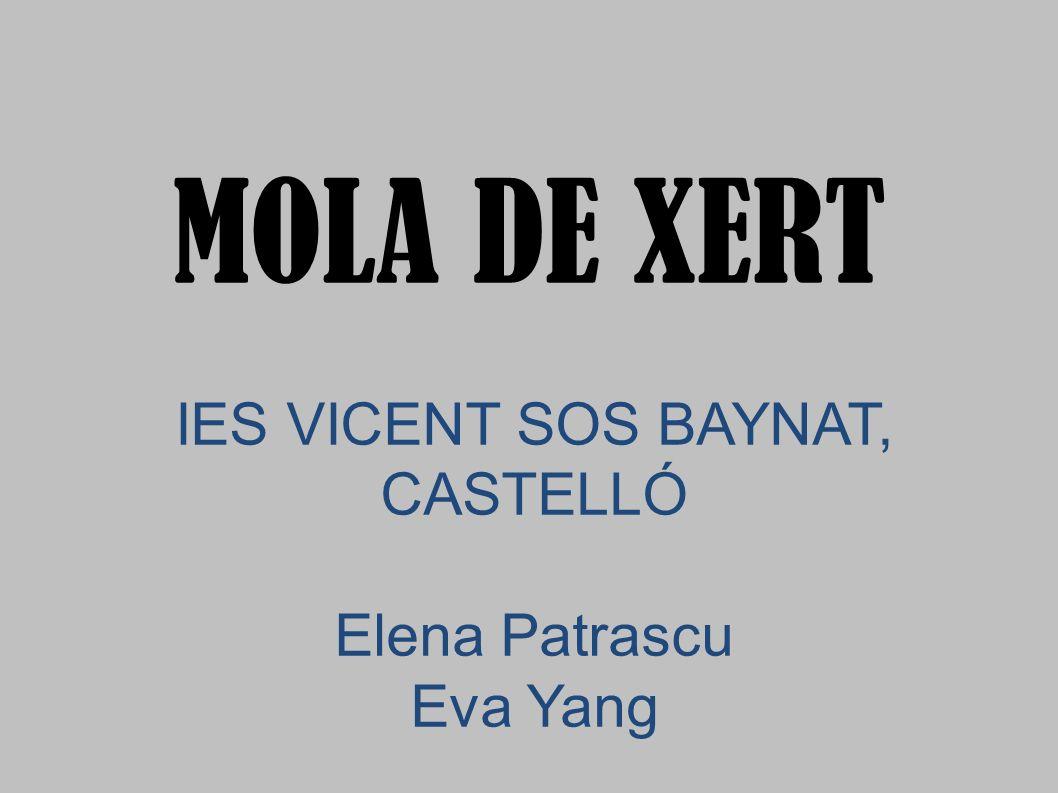IES VICENT SOS BAYNAT, CASTELLÓ Elena Patrascu Eva Yang