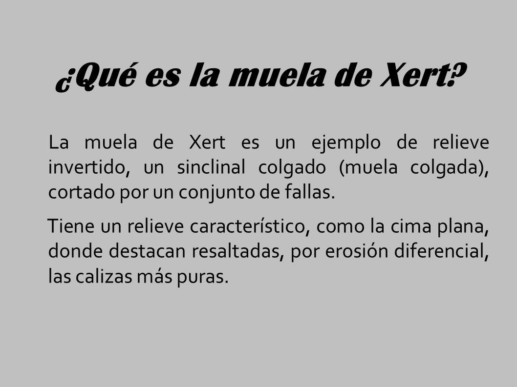 ¿Qué es la muela de Xert