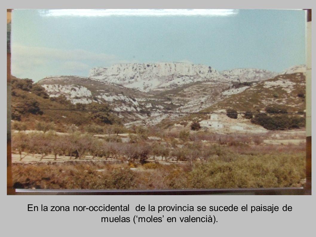 En la zona nor-occidental de la provincia se sucede el paisaje de muelas ('moles' en valencià).
