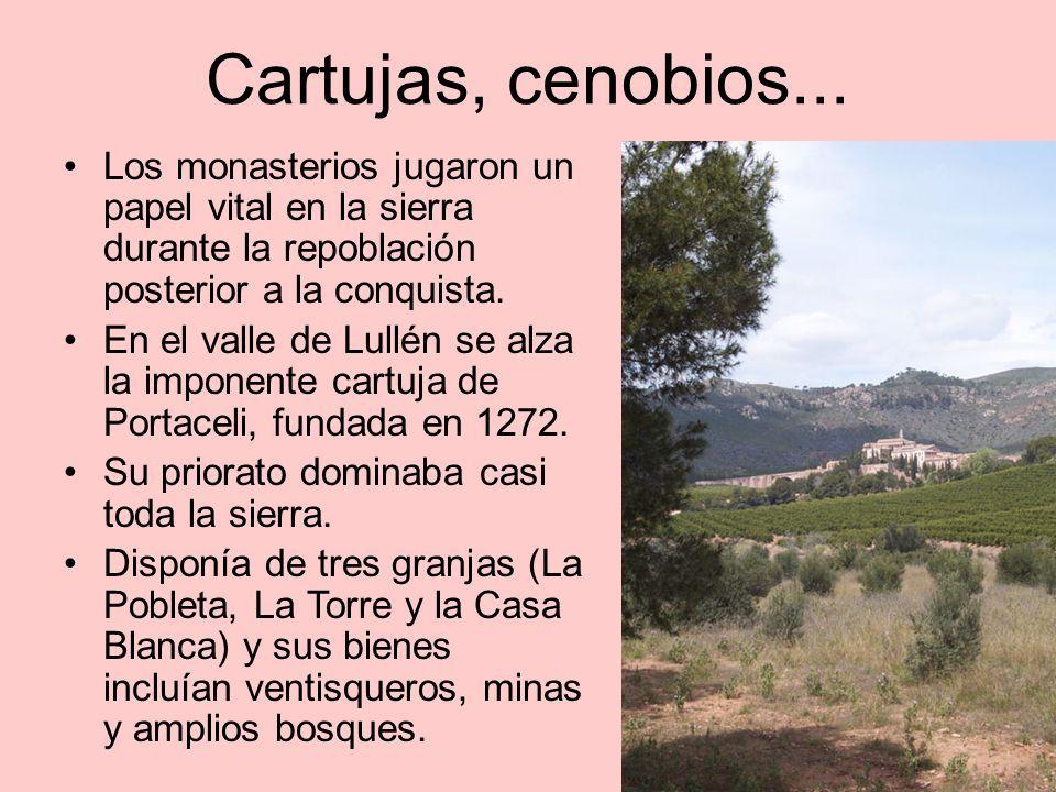 Cartujas, cenobios... Los monasterios jugaron un papel vital en la sierra durante la repoblación posterior a la conquista.