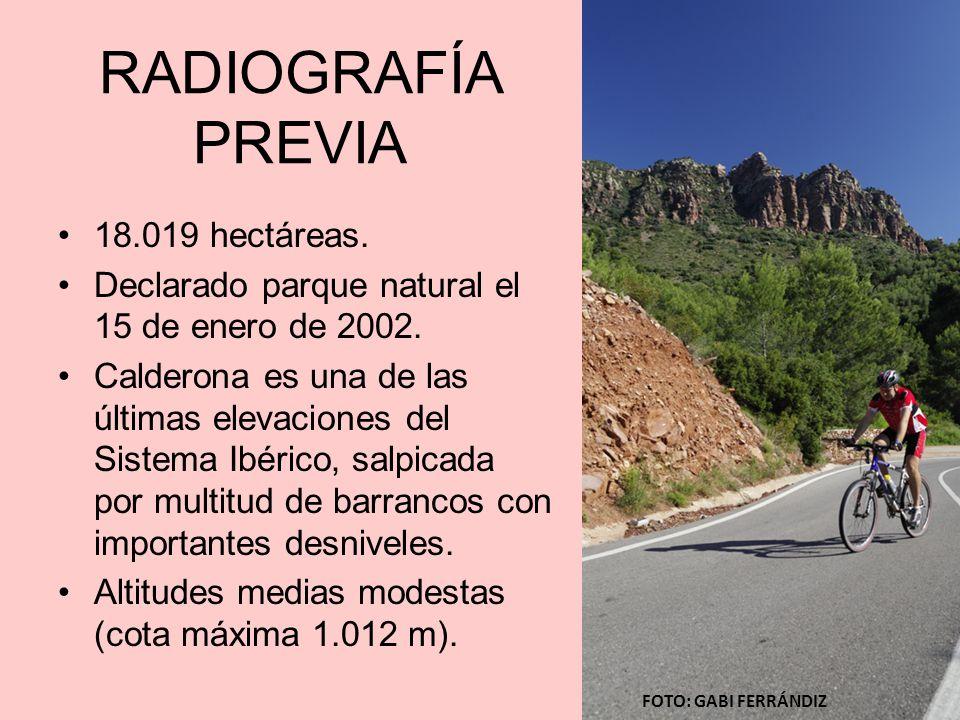 RADIOGRAFÍA PREVIA 18.019 hectáreas.