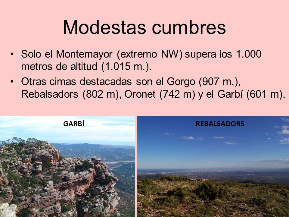 Modestas cumbres Solo el Montemayor (extremo NW) supera los 1.000 metros de altitud (1.015 m.).