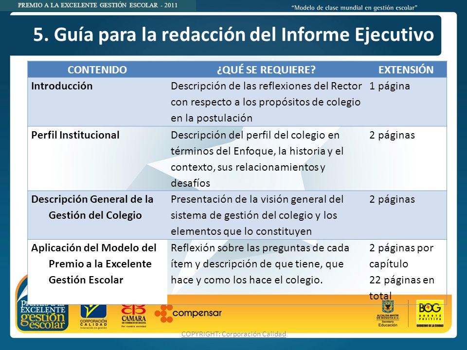 5. Guía para la redacción del Informe Ejecutivo