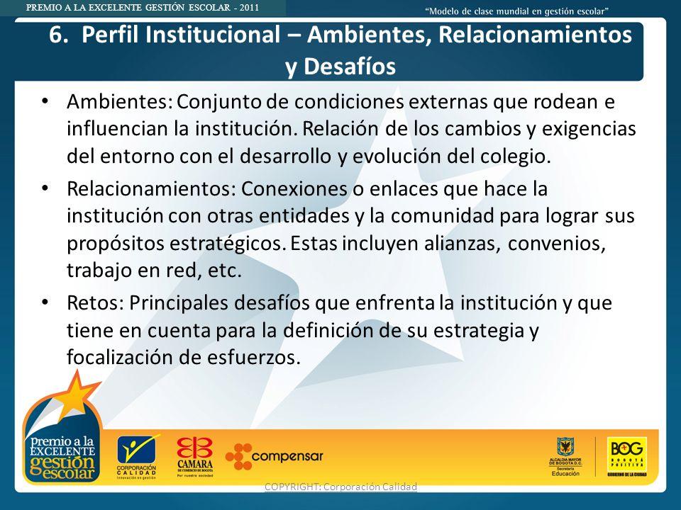 6. Perfil Institucional – Ambientes, Relacionamientos y Desafíos