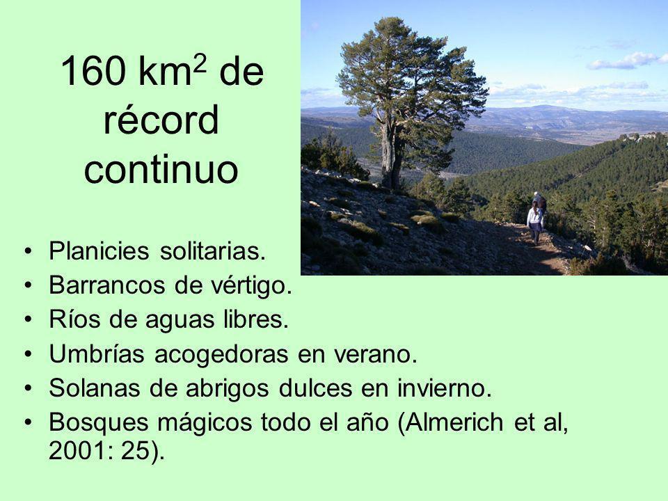 160 km2 de récord continuo Planicies solitarias. Barrancos de vértigo.