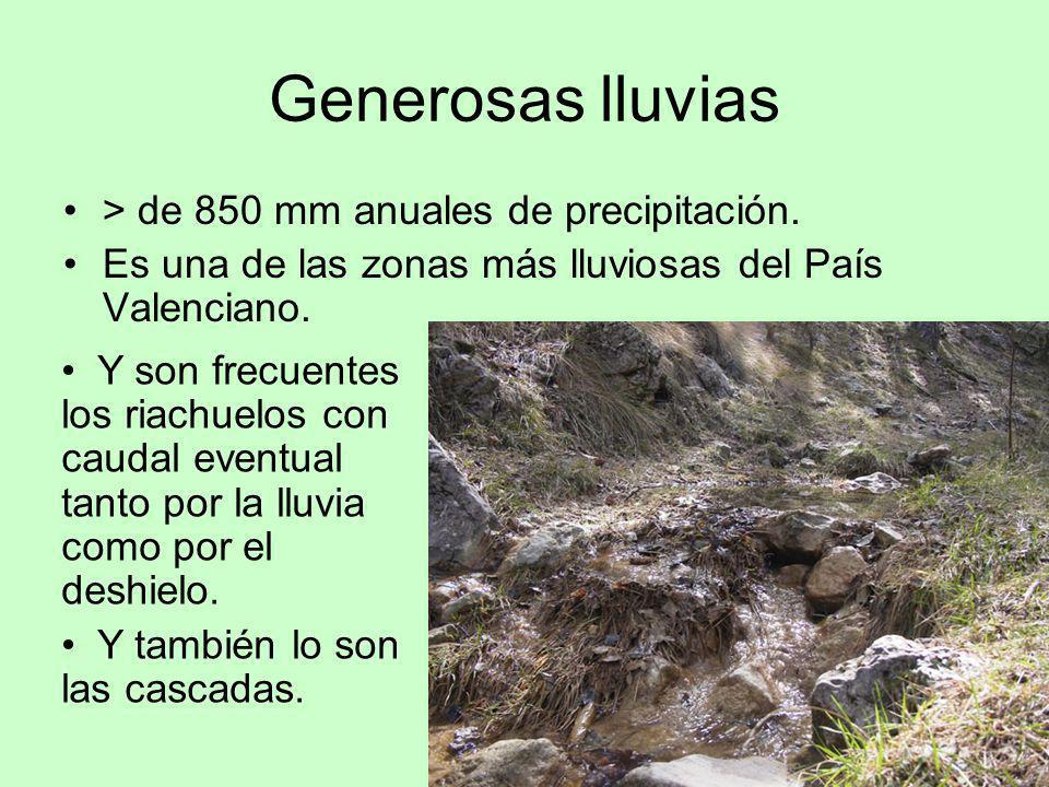 Generosas lluvias > de 850 mm anuales de precipitación.